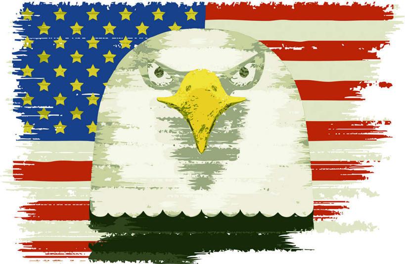 图画,注视,星条旗,画,排列,一只,动物,观察,看,站着,星形,美国国旗