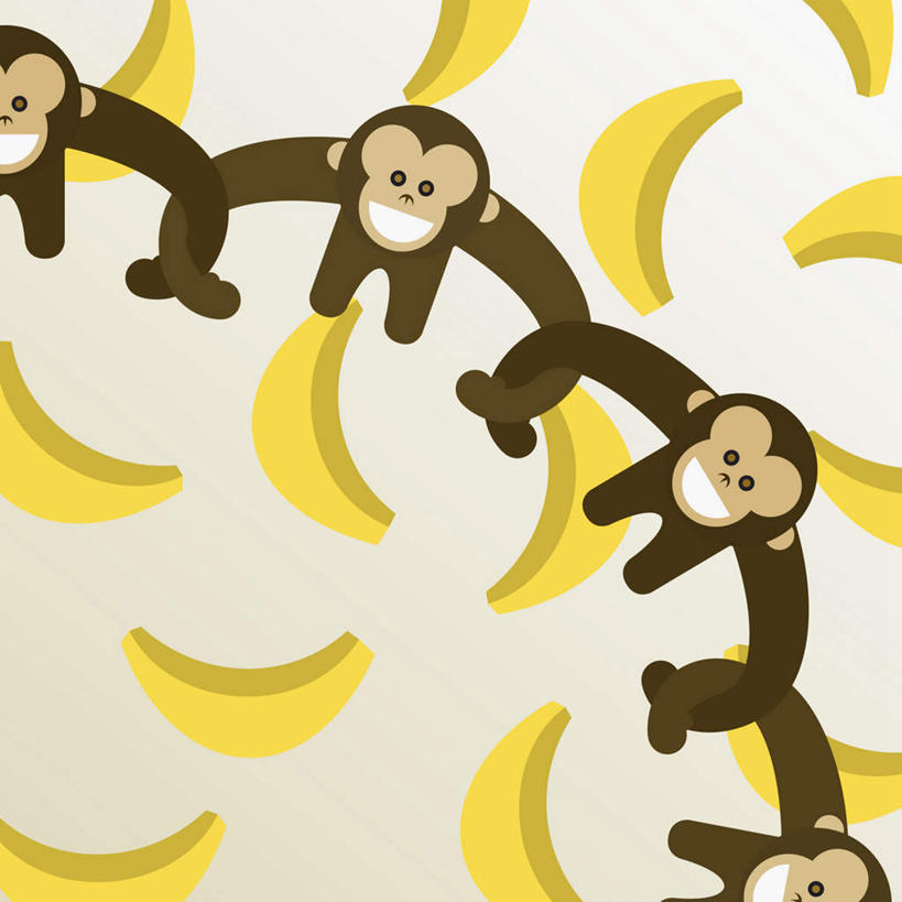 室内,白天,白色背景,正面,数码,科技,哺乳动物,猴,野生动物,猴子,香蕉