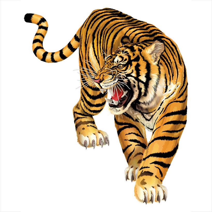 无人,站,方图,插画,室内,白天,白色背景,正面,数码,科技,哺乳动物,虎