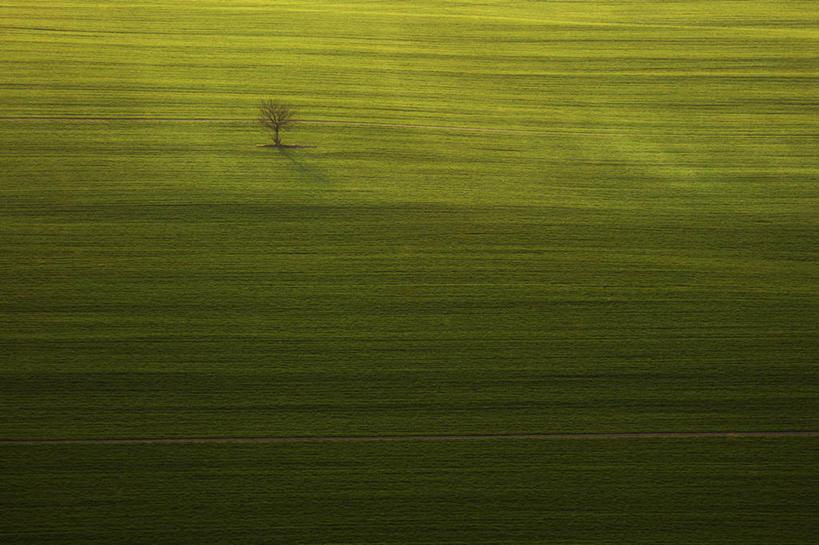 横图,俯视,航拍,室外,白天,斯洛伐克,田地,草,自然,摄影,宁静,鸟瞰,彩