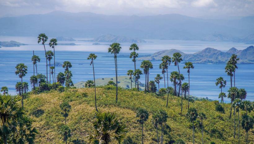 自然,景色,摄影,东南亚,宁静,自然风光,印度尼西亚共和国,爪哇,爪哇岛