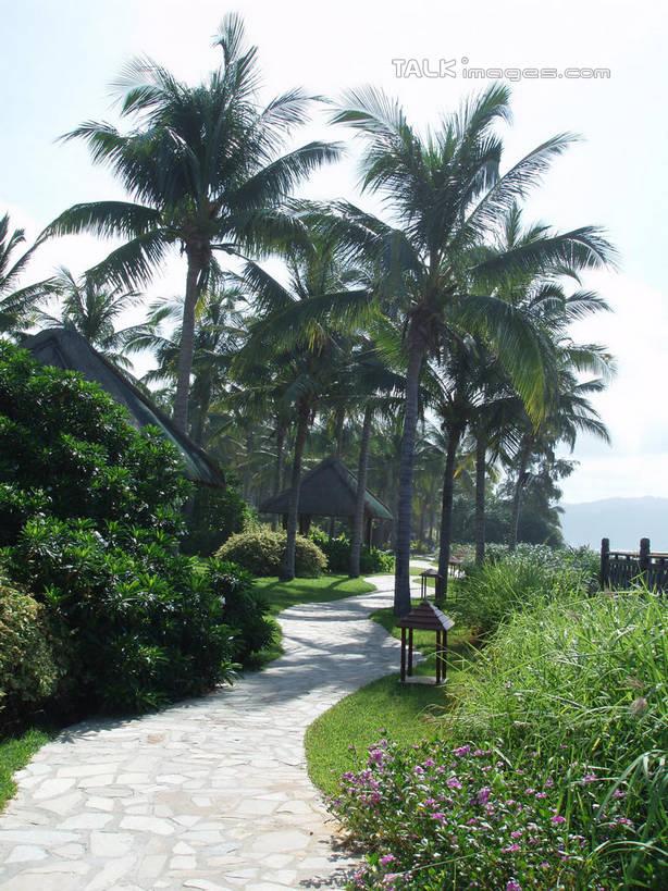 海南风景图无水印