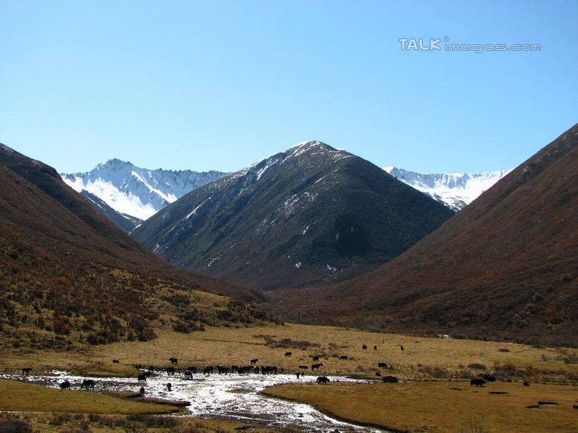 冬季,冬天,热带,山谷,山峦,娱乐,草,蓝色,蓝天,天空,阳光,自然,群山