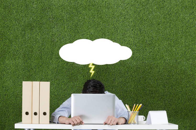 横图,彩色,照片,衬衫,商务,失败,电脑,笔记本电脑,显示器,互联网,草地
