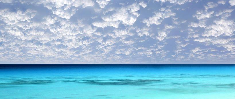 大海带字的图片